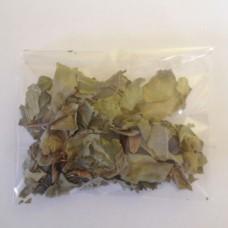 Sidr Leaves (Ziziphus)